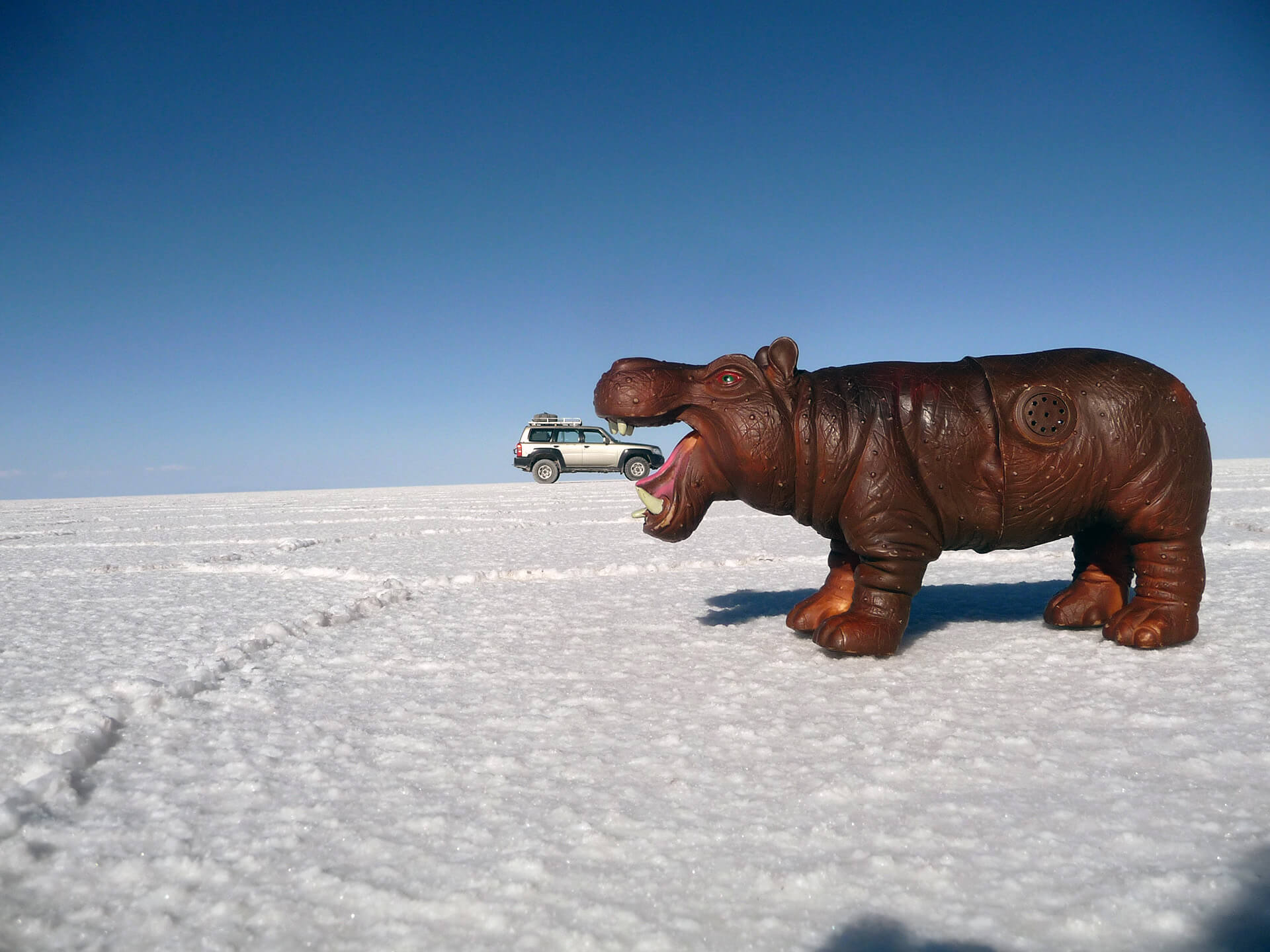 salar-de-uyuni-hipo-fun-photo